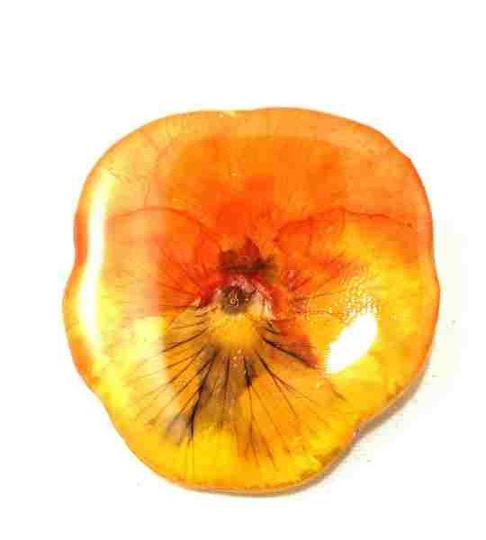 veritable-pensee-rouge-orange-jaune-en-broche-s