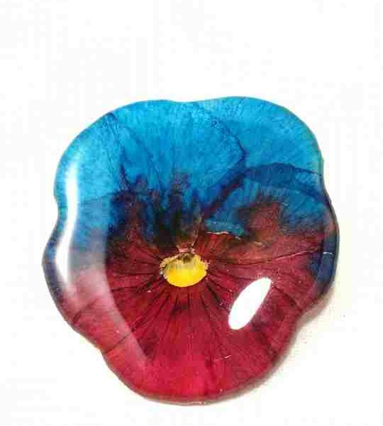 veritable-pensee-rouge-turquoise-fuchsia-en-broche-s